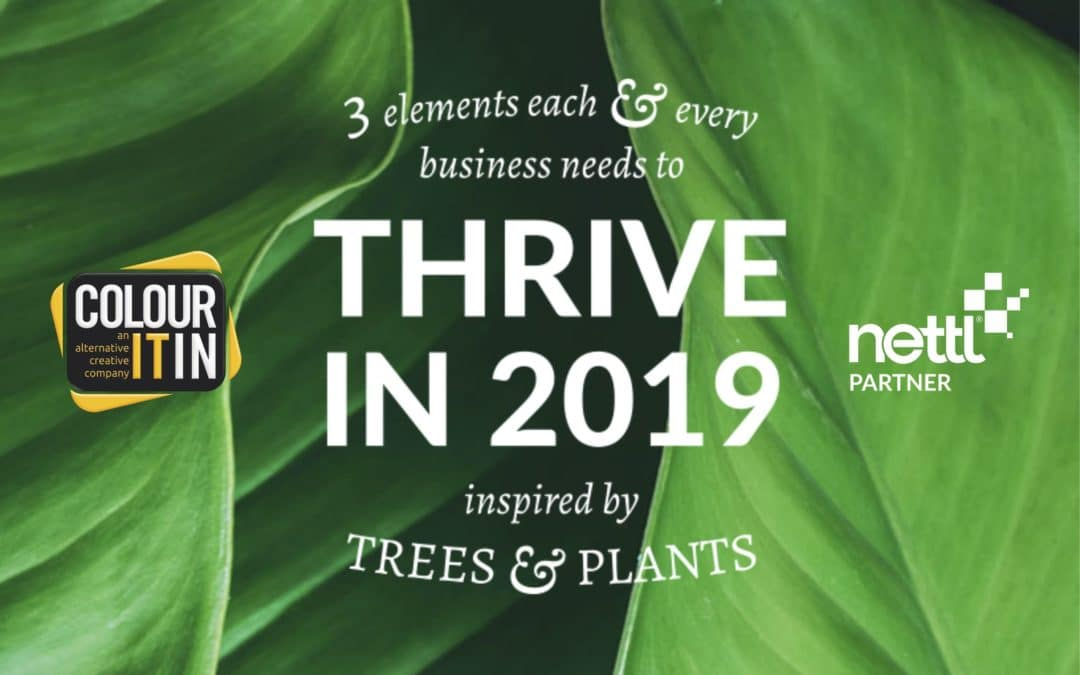 Thrive in 2019 – Business Growth